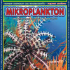 http://zmijka.pl/wp-content/uploads/2014/03/Microplankton.jpg
